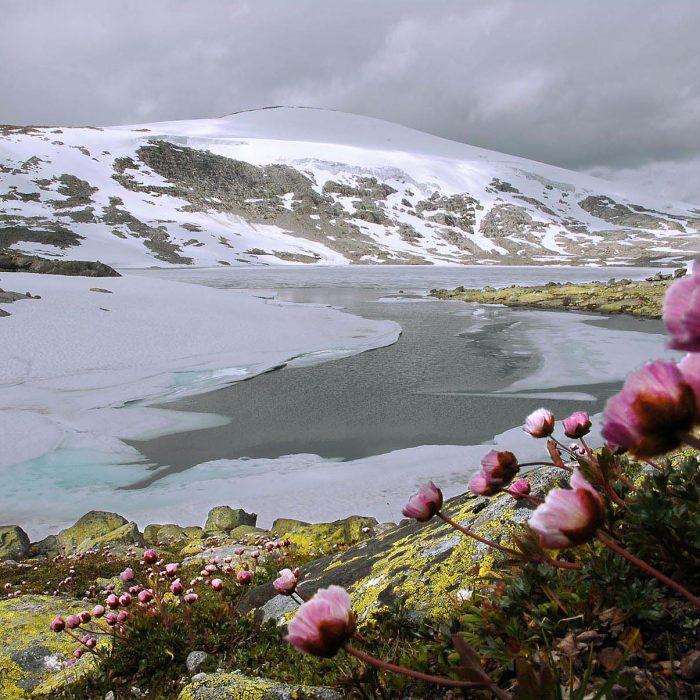 Bild norwegen